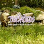 The wilds 2